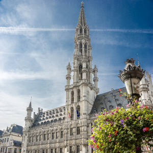 brussels pic