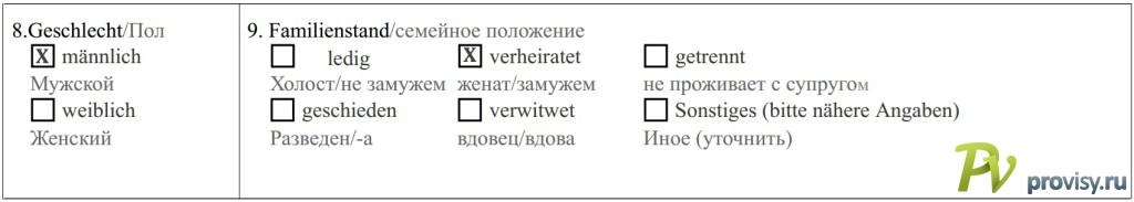 8-9-anketa-v-avstriu-1024x183-kh