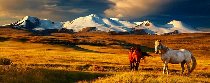mongolia-tourism